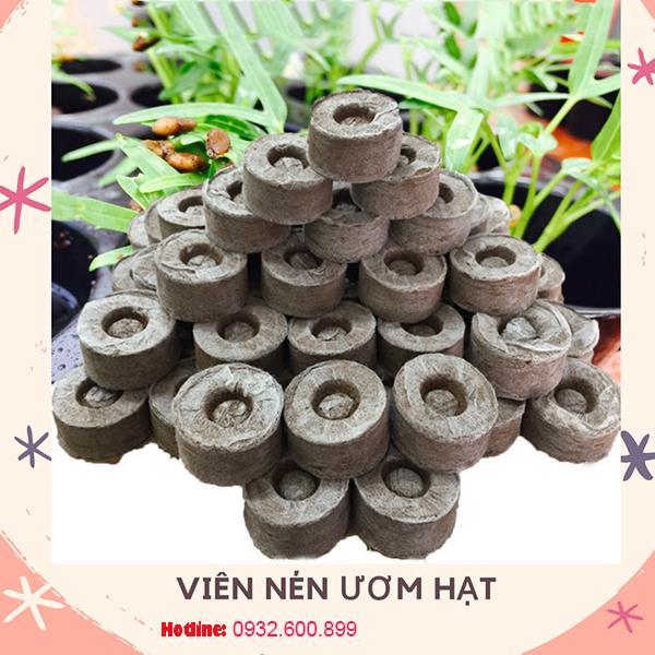 Combo 100 viên nén ươm hạt xơ dừa